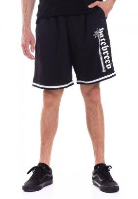 Hatebreed - Doom Awaits You Striped - Shorts