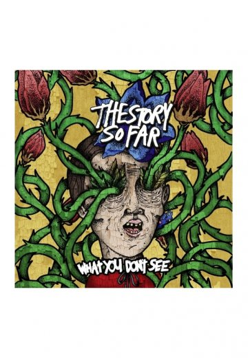 The Story So Far - What You Don't See - CD