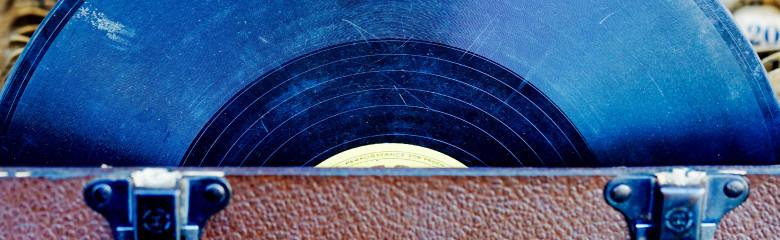 Vinylvård