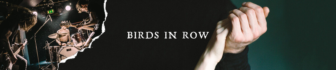 Birds In Row
