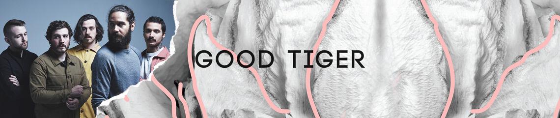 Good Tiger